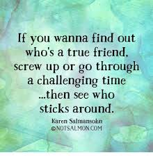 True Friend Meme - if you wanna find out who s a true friend screw up or go through a