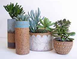 marvelous idea ceramic pots for plants beautiful decoration