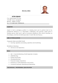 Sample Resume For Credit Manager by Nitin Kumar Resume Credit Analyst