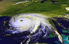 saving the whole family this hurricane season markham woods