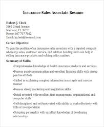 resume skills and abilities sles best sales resume free premium templates
