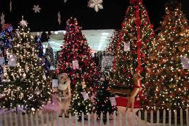 christmas trees artificial christmas trees seasonal specialty stores foxboro