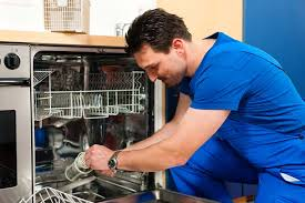 Frigidaire Dishwasher Not Pumping Water How To Repair A Dishwasher
