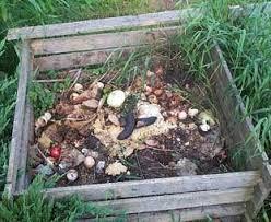 compost pile hazards internachi