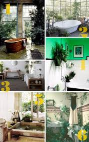 34 best indoor jungle images on pinterest plants bathroom ideas