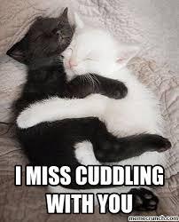 Snuggle Meme - cuddle meme car memes misc pinterest car memes cuddling and