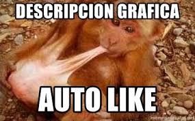 Auto Meme Generator - descripcion grafica auto like auto like meme generator