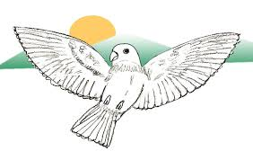 photos sketch of birds flying drawing art gallery