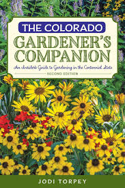 Companion Gardening Layout by A Crash Course In Colorado Gardening 5280