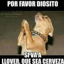 fotos graciosas de hombres borrachos 8cf4bbdefef2cbdf1856e875c8d38a7c memes chistosos de borrachos memes