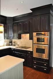 Kitchen Cabinets In Home Depot Kitchen Black Kitchen Cabinets Pictures Black Kitchen Cabinets