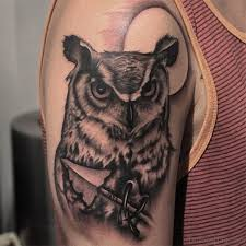 Owl Shoulder - 40 speechless owl on shoulder