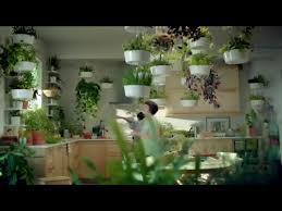 dream kitchen herb garden u2022 helpfulgardener com