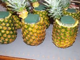 Pineapple Decoration Ideas 110 Best Pineapple Themed Weddings Images On Pinterest Themed