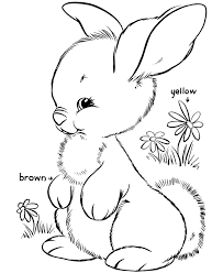 free image gallery rabbit coloring pages free printable