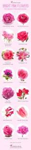 List Of Flowers by Best 20 Flower Chart Ideas On Pinterest Wedding Flower Guide