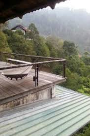 hammock on deck at teratak bonda overlooking forest picture of