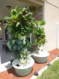 the family garden tower garden