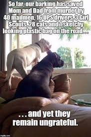 Dog Barking Meme - so far our barking has saved mom and dad from murder by 40 mailmen