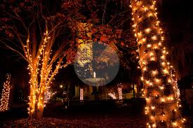 marion square charleston sc decorated for christmas richard