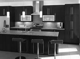 black kitchen cabinets home depot the ultimate black kitchen cabinets modern design