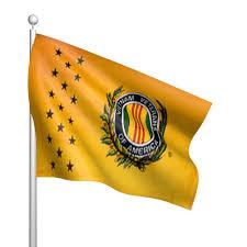 Viet Nam Flag 3ft X 5ft Vietnam Veterans Of America Flag Flags International