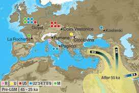 Asia And Europe Map by Pre Neolithic Dna Suggests Major Late Glacial Population Turnover