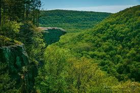 Arkansas Landscapes images Damon shaw arkansas landscapes jpg