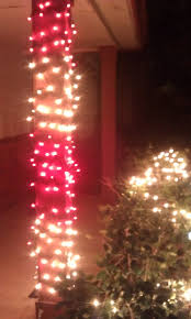 Candy Cane Lights 67 Best Candy Cane Lights Images On Pinterest Candy Canes