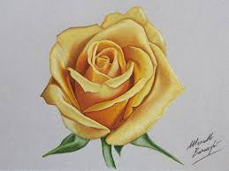 yellow flower tattoos amazing 3d drawings by marcello barenghi 3d drawings drawings
