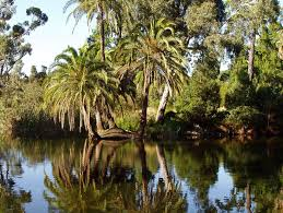 Melb Botanical Gardens by Reasons To Visit Melbourne Australia