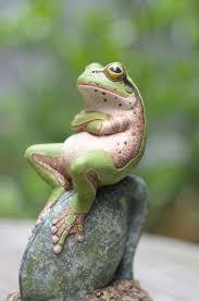 Unimpressed Meme - 10 funniest unimpressed memes unimpressed meme frogs animal