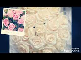 chanson arabe mariage musique arabe de mariage