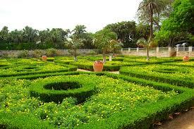 Bermuda Botanical Gardens Arts In The Garden Tour