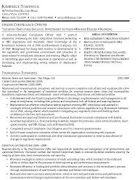 Security Officer Resume Sample Objective Chief Purchasing Officer Resume Effect Environment Maxillofacial