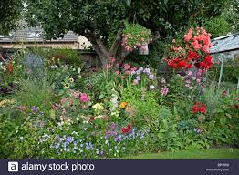 Small Bungalow by Colourful Display Of Flowers In Garden Of Small Bungalow