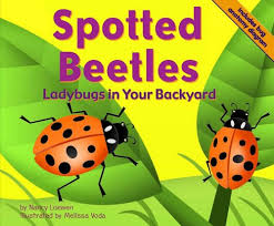 How To Find Ladybugs In Your Backyard Spotted Beetles Ladybugs In Your Backyard Lexile Find A Book