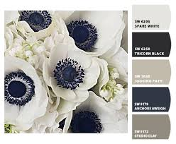 to pick a color palette for your entire home