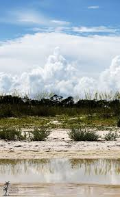 473 best in and around st george island images on pinterest