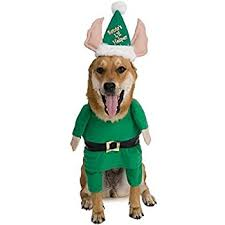 Elf Halloween Costumes Amazon Rubie U0027s Santa U0027s Helper Elf Pet Costume Medium