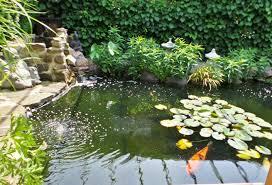 teich anlegen u2013 tipps zu planung bepflanzung und mehr