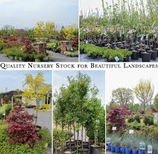 Flowers Gardens And Landscapes by Sunset Acres Nursery Ephrata Flowers Gardening Lancaster County Plants