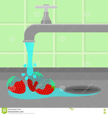 Kitchen Sink Clip Art Tap Washing Strawberry Stock Vector Image 79514203