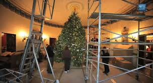 obama u0027s christmas tree takes 4 days to put up at height of