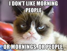 Morning People Meme - i don t like morning people or mornings or people high res