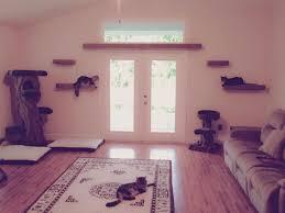 best 25 cat wall shelves ideas on pinterest diy cat shelves