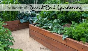 the benefits of raised bed gardening happiness matters