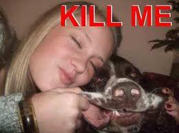 Funny Dog Face Meme - funny dog face kill me meme pics photos bajiroo com