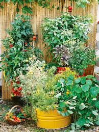Home Vegetable Garden Ideas How To Plan A Vegetable Garden