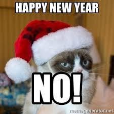 Happy New Year Cat Meme - th id oip xqdhjiuzaoolx wzackrxqaaaa